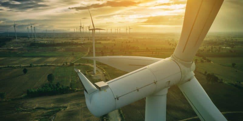AFRIQUE : à travers la SFI, la Finlande va investir 114 M€ dans l'énergie éolienne©/Shutterstock