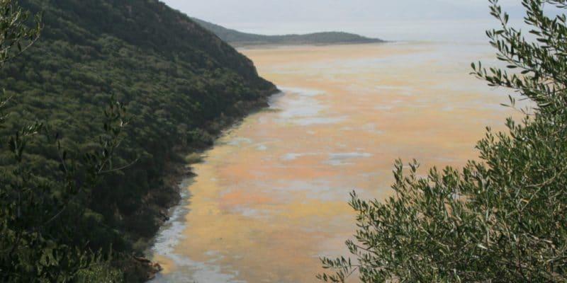TUNISIE : le projet de dépollution du lac Bizerte sera achevé d'ici 5 ans© BOULENGER Xavier/Shutterstock