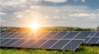 SIERRA LEONE: IFC finances 50 MW solar project©Diyana Dimitrova/Shutterstock