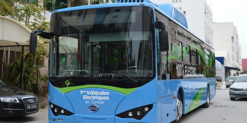 Bus-Electrique-Tunis-BYD