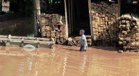 CAMEROUN : Pady 2 est lancé, bientôt la fin des inondations dans la capitale Yaoundé©Vadim Petrakov/Shutterstock