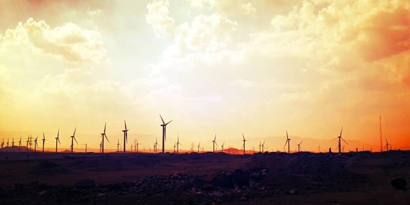 ÉGYPTE : ce projet éolien de 250 MW, pour lequel Lekela sollicite 81,4 M$ de la Berd©Ayman El-Nady/Shutterstock