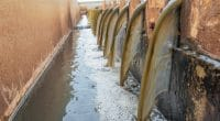 TANZANIA: Dar es Salaam sets up sludge treatment plant©Kungfu Choojai/Shutterstock