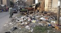 EGYPT: Government develops comprehensive municipal waste management system©StreetVJ/Shutterstock