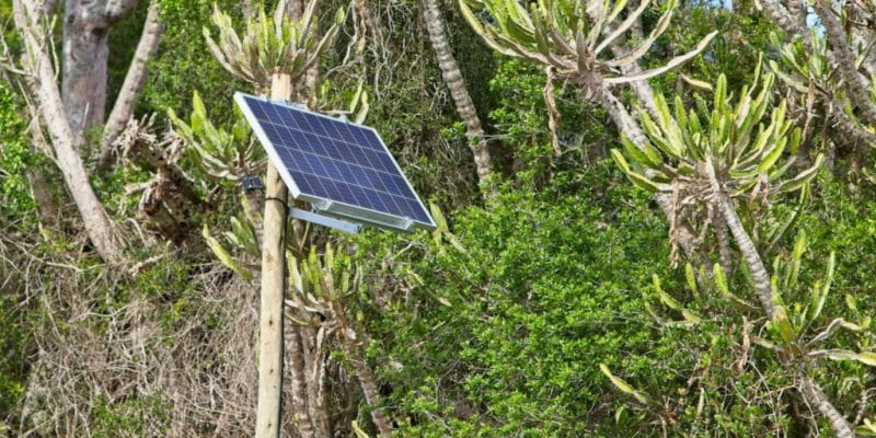TOGO: EDF and BBOXX in partnership to develop solar off grid © MD_Photography/Shutterstock