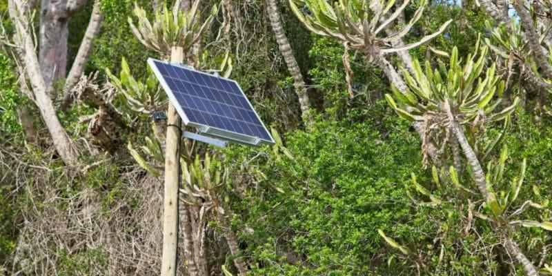 TOGO : un partenariat entre EDF et BBoxx pour développer l'off-grid solaire © MD_Photography/Shutterstock
