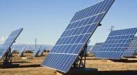 NIGER : Nigelec met en service le parc solaire photovoltaïque de Malbaza© Vibe Images/Shutterstock