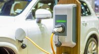 EGYPT: ABB installs first charging station for electric vehicles© Tawat onkaew/Shutterstock