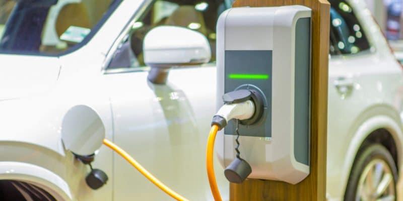 ÉGYPTE : ABB installe la première borne de recharge pour véhicules électriques© Tawat onkaew/Shutterstock