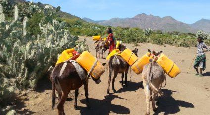ÉTHIOPIEN : Xuzhou Construction inaugure 41 cuves à eau pour le village Goleba Qulito© Protasov AN/Shutterstock