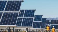 MALAWI : les travaux de construction de la centrale solaire de Kanzimbe sont lancés ©Mark Agnor/Shutterstock