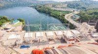TANZANIE: Arab Contractors et Elsewedy vont construire le barrage de Stiegler's Gorge ©Sopotnicki/Shutterstock