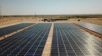 TUNISIE : 11,5 M€ de KfW pour l'extension par Gensun de la centrale solaire de Tozeur©Sebastian Noethlichs/Shutterstock