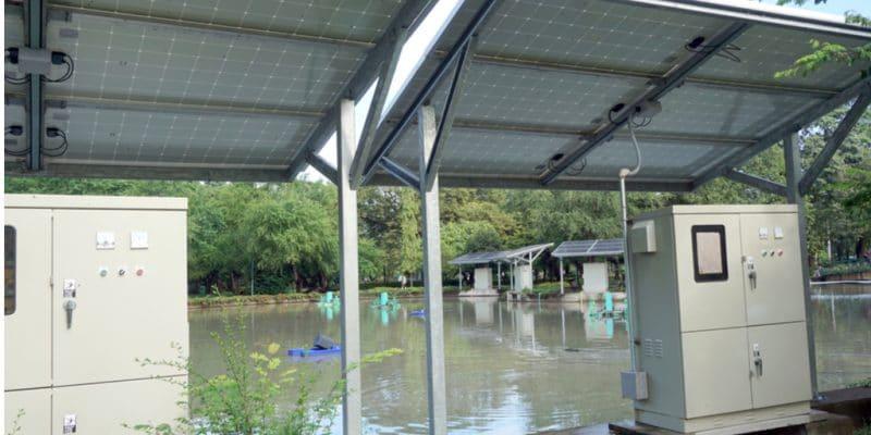 OUGANDA : Tiger Power va fournir de l'énergie à 300 foyers et entreprises à Kyenjojojo ©Jen Watson/Shutterstock