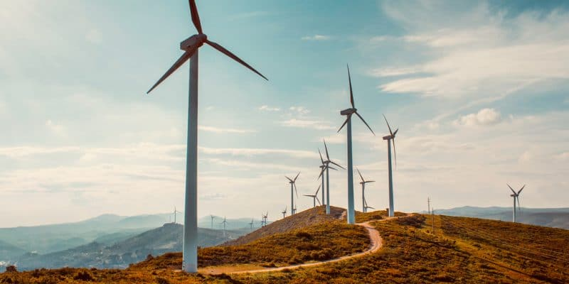 SENEGAL: Lekela launches construction of Taiba N'Diaye wind farm by Lekela©Space-kraft/Shutterstock