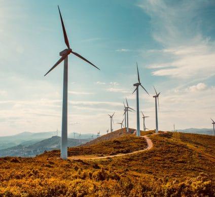 SÉNÉGAL : Lekela lance la construction par Vestas du parc éolien de Taiba N'Diaye©Space-kraft/Shutterstock
