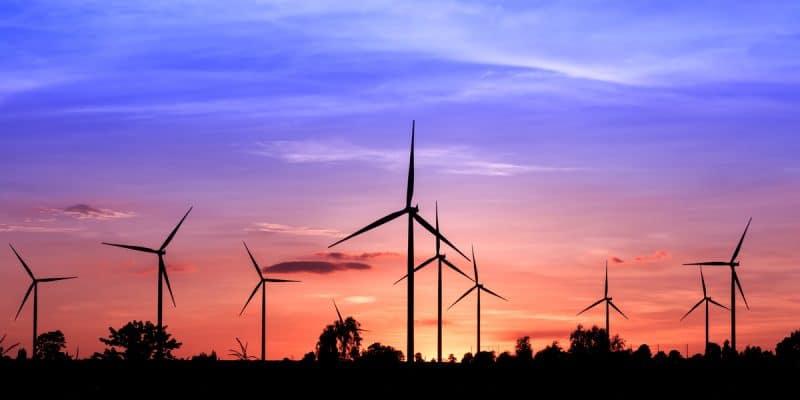 MAROC : le pays partage son expérience dans les énergies renouvelables avec l'Afrique©SUWIT NGAOKAEW /Shutterstock
