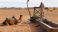 MAURITANIA: Authorities launch drinking water supply project in Timbedra©Mieszko9/Shutterstock