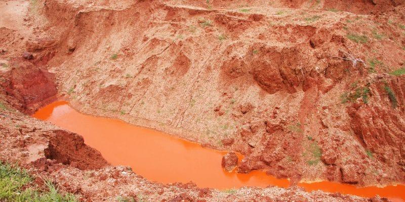 CONGO BRAZZAVILLE : le chinois Agil Congo est supendu pour désastre environnemental©desk006Shutterstock