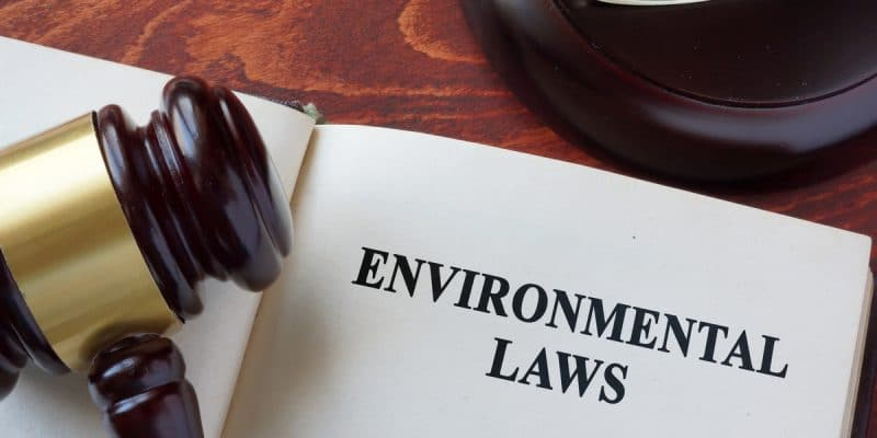 CAMEROON: Environmental code finally emerges©designer491/Shutterstock