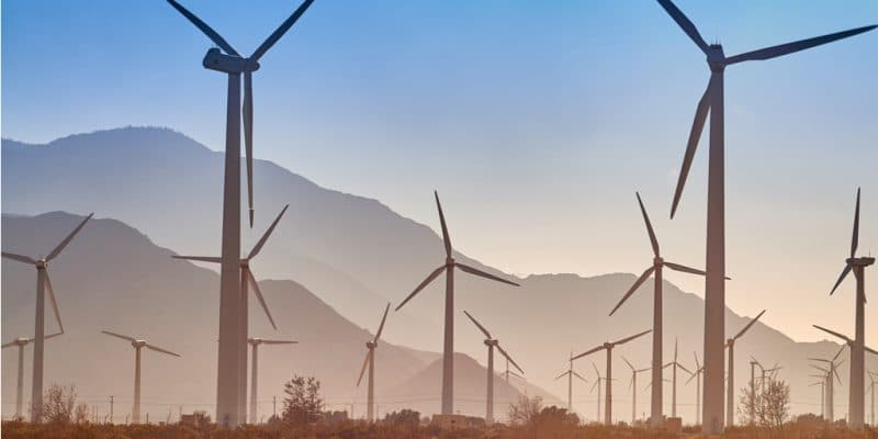 EGYPT: Four IPPs in need of land to build 400 MW wind farms©Patrick Jennings/Shutterstock