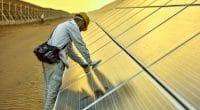 ÉGYPTE : Alcazar Energy met en service un parc solaire du projet Nubian Suns (64 MW)©Jenson/Shutterstock