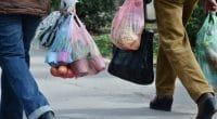 AFRIQUE DU SUD : Woolworths va supprimer les sacs plastiques dans tous ses magasins©Emilija Miljkovic/Shutterstock