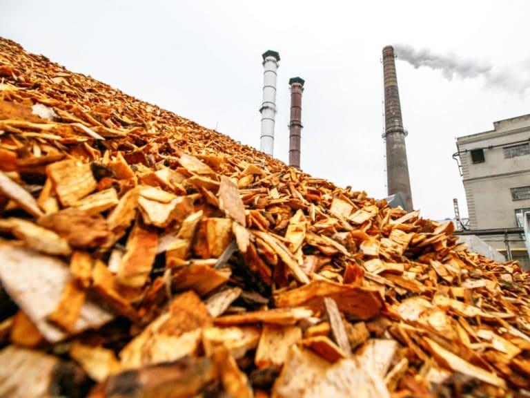 Biomass Power Plant | Afrik 21