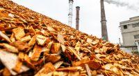 AFRIQUE : BAD investit 25 M$ dans ARPF et milite pour les énergies renouvelables ©Rokas Tenys/Shutterstock