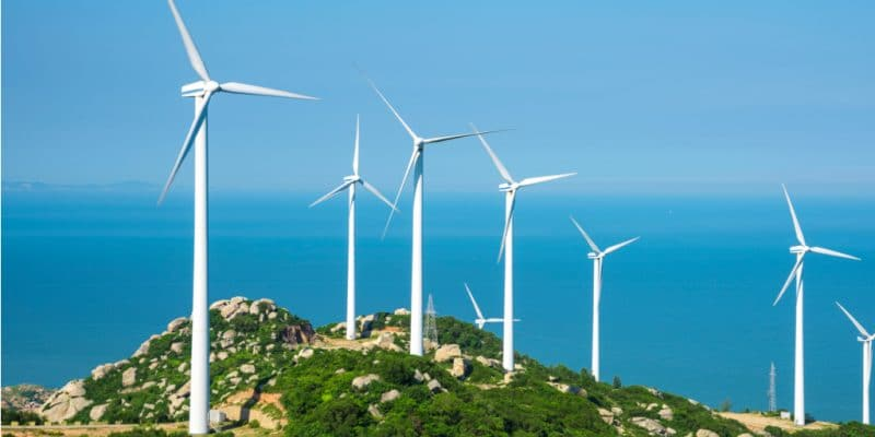NAMIBIA: InnoSun Energy inaugurates phase one of Ombepo's wind farm©city hunter/Shutterstock