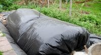 KENYA: AstraZeneca and CISL start up 50 biogas digesters ©TK99/Shutterstock