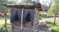 TCHAD : des toilettes à compost, pour réduire la défécation en plein air©franciscojorganShutterstock