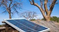 MALI : les autorités lancent le projet Sher pour l'électrification de 50 localités ©KRISS75/Shutterstock