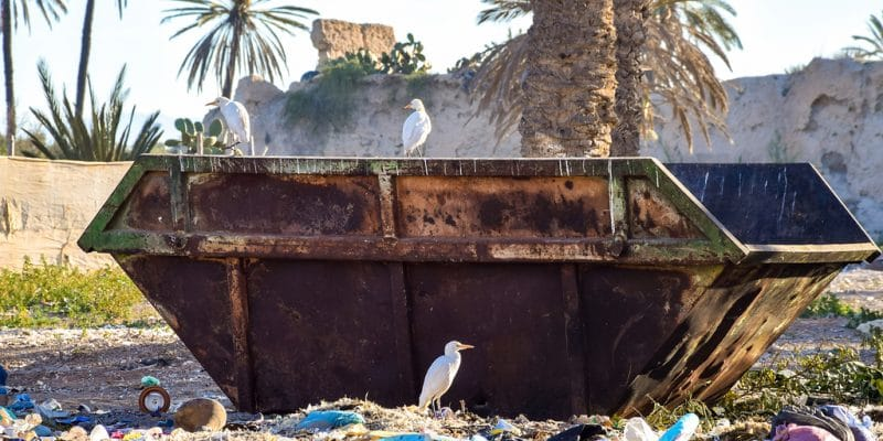 MOROCCO: Tangier chooses Averda for its 20-year waste recovery contract©Jen Watson/Shutterstock