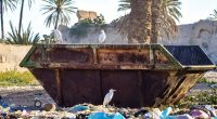 WEST AFRICA: Sustainable waste management project in place©Jen Watson/Shutterstock