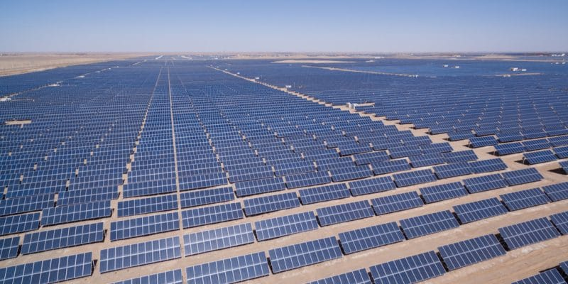 EGYPT: Acciona Energía and Swicorp commission three 186 MW solar farms©lightrain/Shutterstock