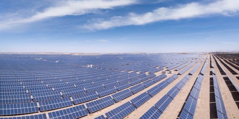 ALGÉRIE : l'État relance le programme d'énergies renouvelables pour économiser du gaz©lightrain/Shutterstock
