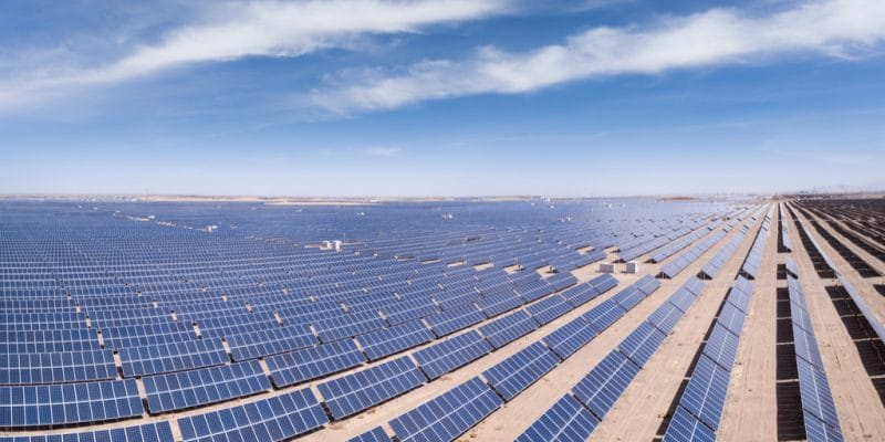 ALGERIA: State relaunches renewable energy programme to save gas©lightrain/Shutterstock