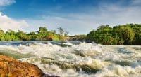 Nil blanc, chutes de Bujagali, Ouganda. © Dimitri Pichugin / Shutterstock.