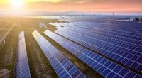 GUINEA-BISSAU: Call for tenders to install solar power plants©Jenson/Shutterstock