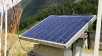 GABON : des barrières électriques solaires pour protéger les cultures de la faune©Aigars ReinholdsShutterstock
