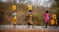 ZIMBABWE : le gouvernement lance un appel d'offres pour un projet d'AEP près de Harare©Jen Watson/Shutterstock