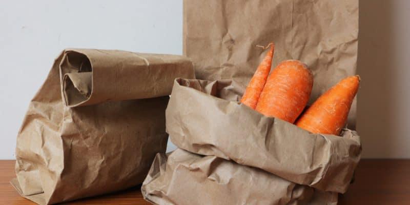 KENYA : bientôt des incitations fiscales pour les emballages biodégradables© d_odinShutterstock