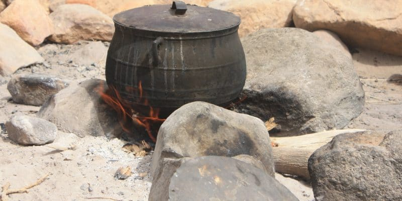KENYA : les investissements du fonds carbone Livelihoods passent à 8 millions €©wlablack/Shutterstock