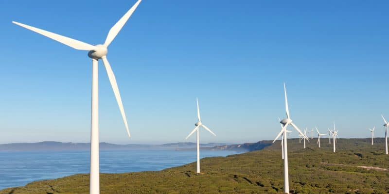 EGYPT: Lekela Power obtains land to produce 250 MW of wind energy in Ras Gharib©David Steele/Shutterstock