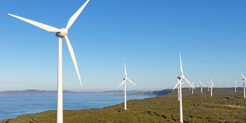 ÉGYPTE : Lekela Power obtient un terrain pour produire 250 MW d'éolienne à Ras Gharib©David Steele/Shutterstock