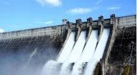 OUGANDA : EAIF et PIDG investissent 27 M$ dans le projet hydroélectrique de Kikagati© Rodphothong Mr.Patchara/Shutterstock