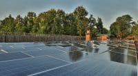 MALAWI: Egenco to produce 20 MW of solar energy via call for tenders©Sebastian Noethlichs/Shutterstock