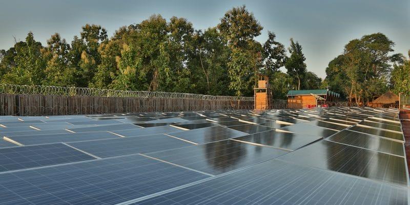 MALAWI : Egenco va produire 20 MW d'énergie solaire via un appel d'offres©Sebastian Noethlichs/Shutterstock