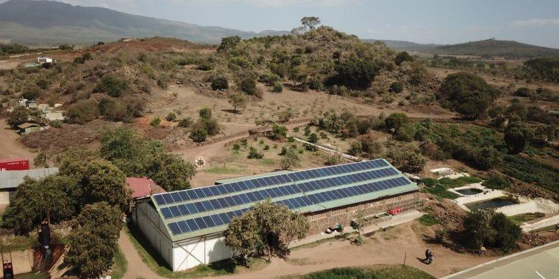 KENYA : Equator Energy fournit une mini-centrale solaire de 1 MW à Tatu City© Sebastian Noethlichs/Shutterstock